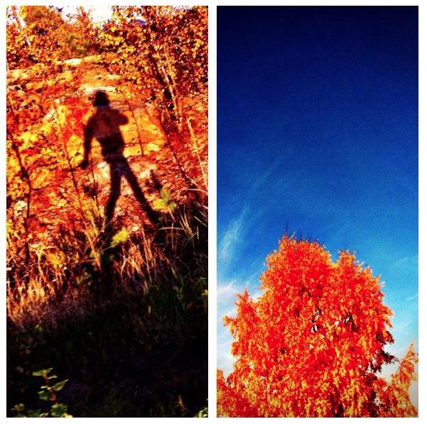 Skärmavbild 2013-10-14 kl. 12.45.17