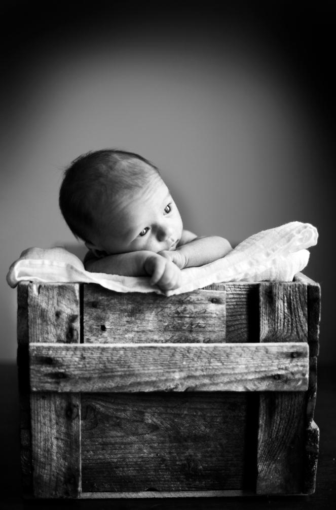 Babies6
